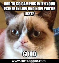 Grumpy Cat Stagg Do meme contest